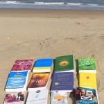 Nog meer boeken over geluk en werk (deel II)